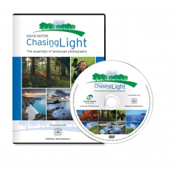 Lee Chasing the Light DVD